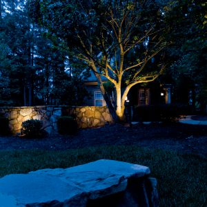 Accent Lighting Services In Canton...