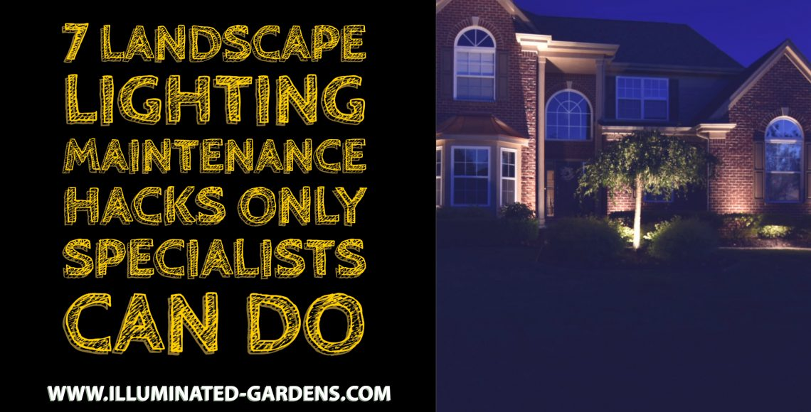7 Landscape Lighting Maintenance Hacks Only Specialists Can Do